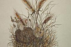 Fauna-GIMG_4610-FieldMice