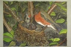 Fauna-Robins