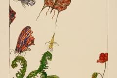 W-Flutterbyes