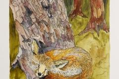 W-Fox-Sleeping