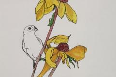 Suzy-with-bird