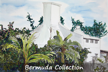 Bermuda collection