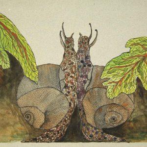 Snails Pace