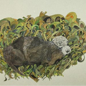 Otters in Kelp