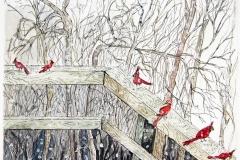 Cardinals-in-Winter