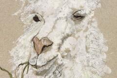 Llama-Chew
