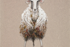 Sheep-Echappe