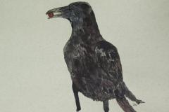 Standing-Crow