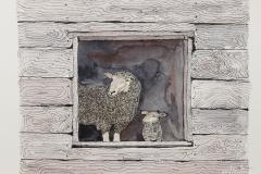 W-Ewe-Lamb-in-Barn