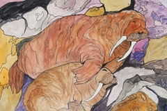 Walrus-Cuddle