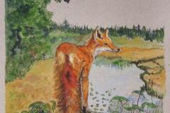 Fox-Lookout