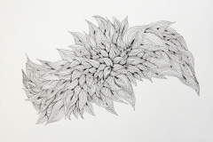 Black-white-squiggles-2