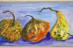 Flora-Gourds