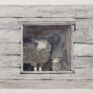 Ewe & Lamb in Barn