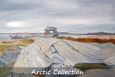 Arctic collection